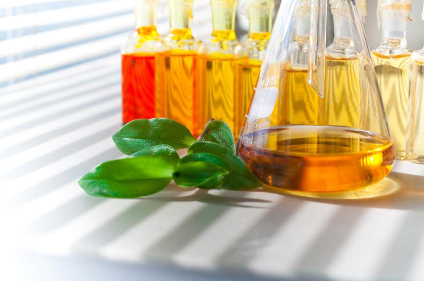 Czym jest olejek moringa do włosów?