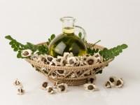Egzotyczne olejki do włosów. Top kosmetyki pielęgnacyjne z olejkiem moringa